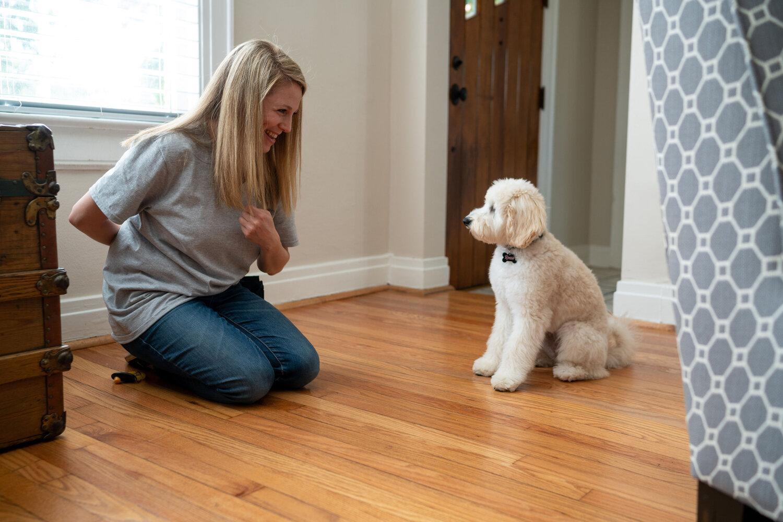 Sabra Dog Training