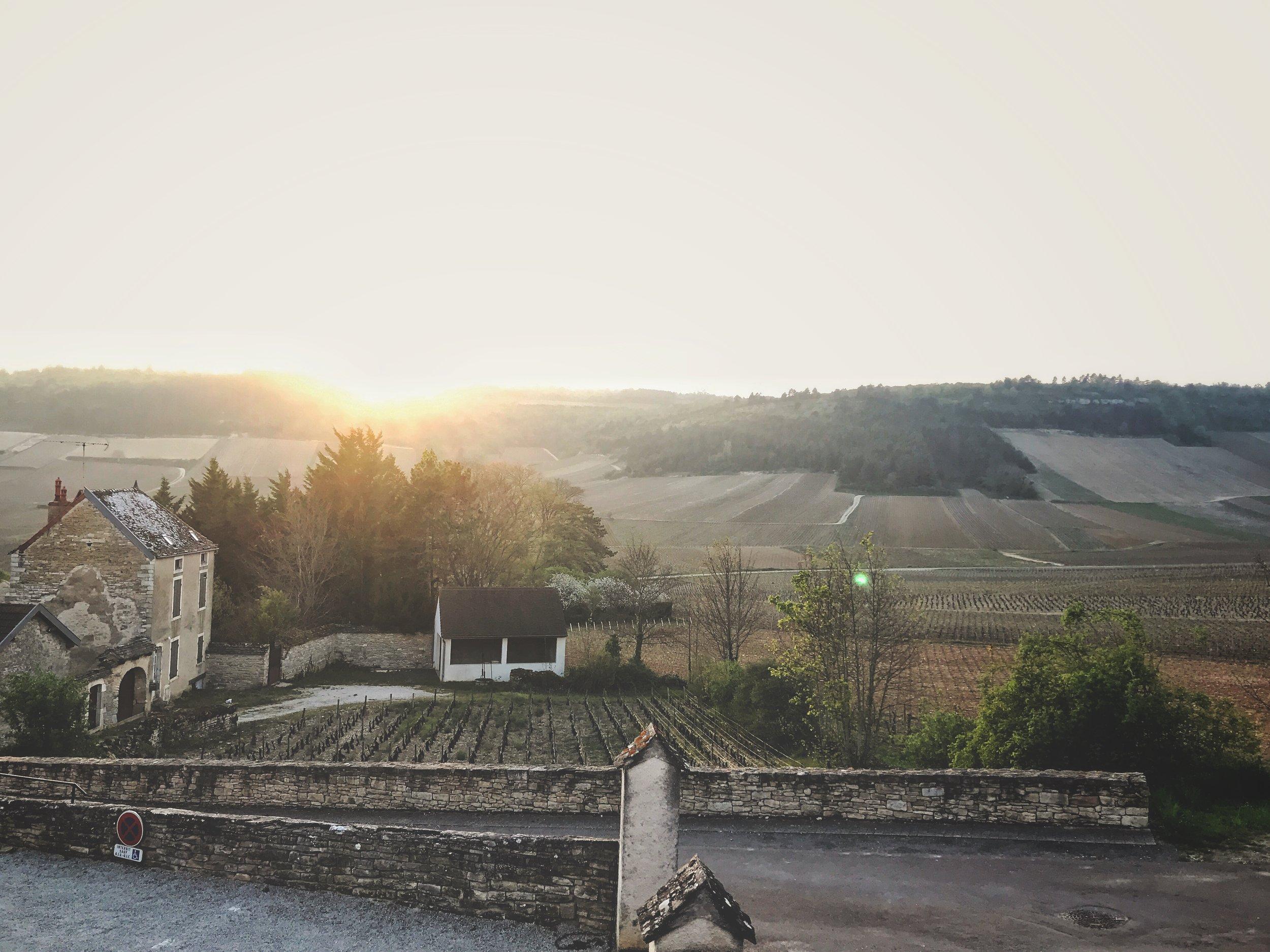 Overlooking Burgundy