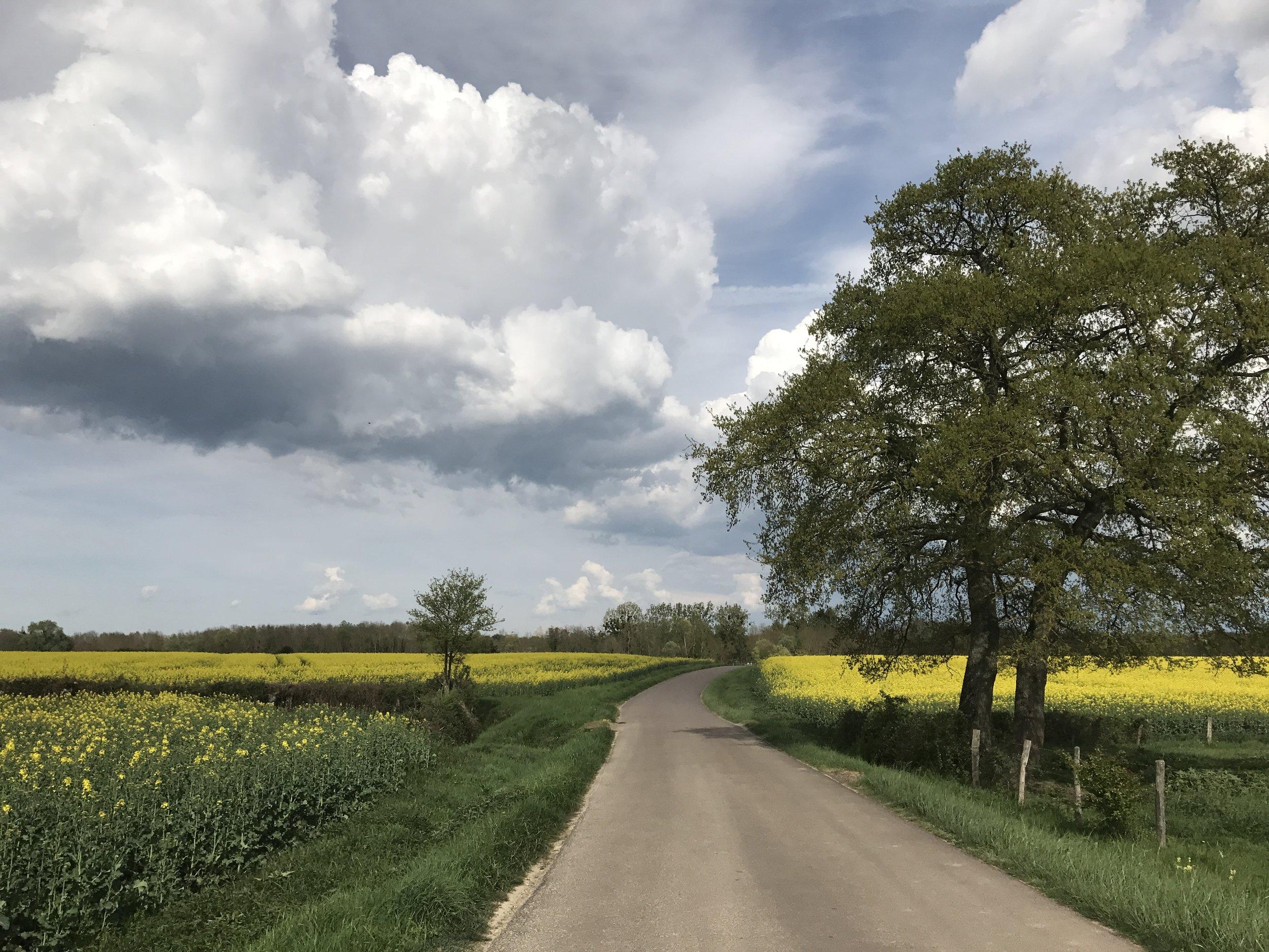 Perfect Burgundian Weather