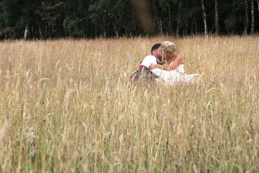 Wild grasses at Fiesta Fields in Surrey