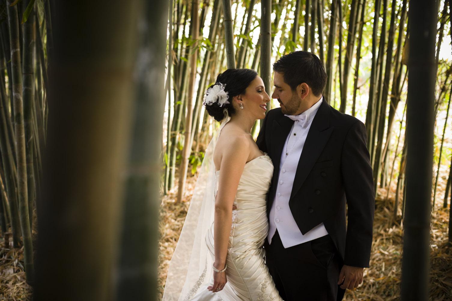 Boda / Wedding.