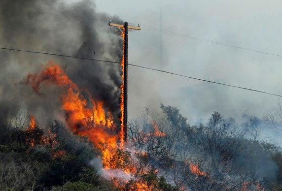 Photo of a wildfire engulfing trees and a telephone pole.