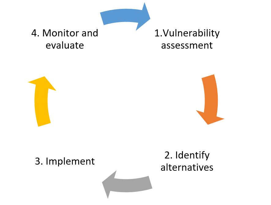 Graphic of a vulnerability assessment cycle.