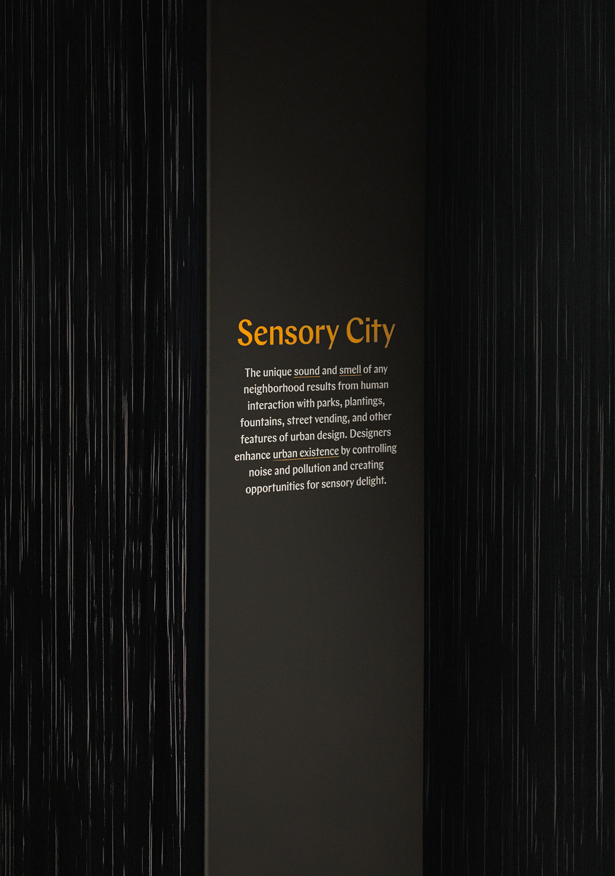 TheSenses_Exhibit_5.jpg