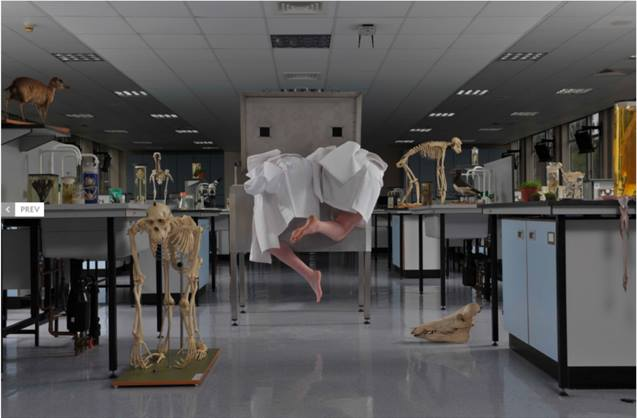 Image: Kira O'Reilly and Jennifer Willet.  Refolding (Laboratory Architectures) . School of Biosciences at the University of Birmingham, 2010. Photography by Hugo Glendinning
