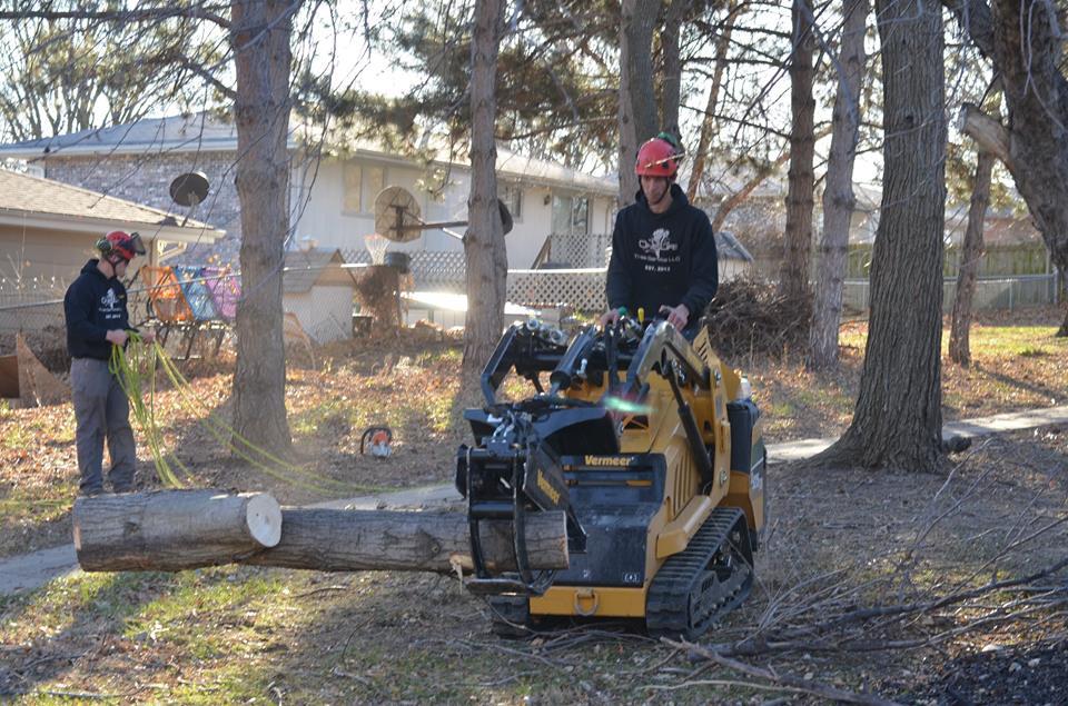 tree service lincoln ne 2.jpg