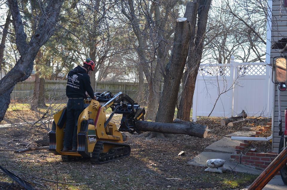 tree service lincoln ne 10.jpg