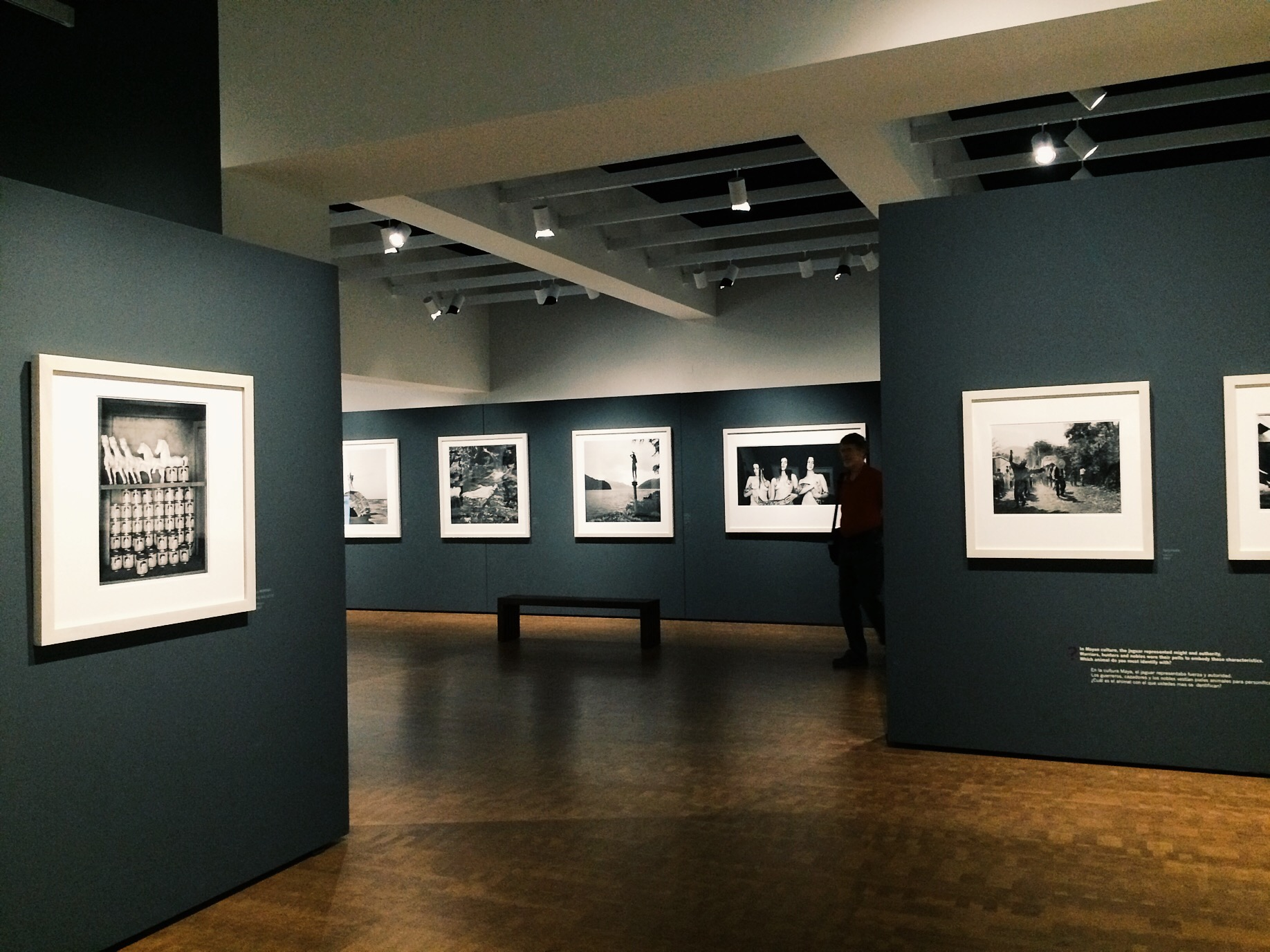 My favorite place to visit, MOPA (Museum of Photographic Arts).