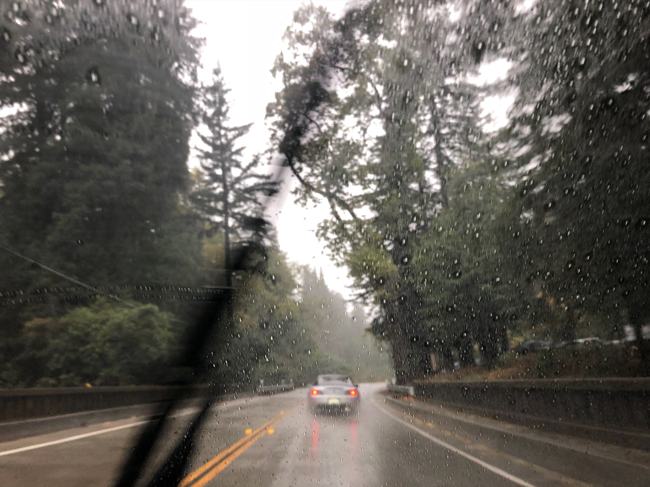 It's kinda scary driving on the 1 in the rain cuz of the cliff and rock slides! Had to dodged a couple of small rocks on the road. My car is low enough for the rocks to make some damage on and under the car so I had to be extra careful.