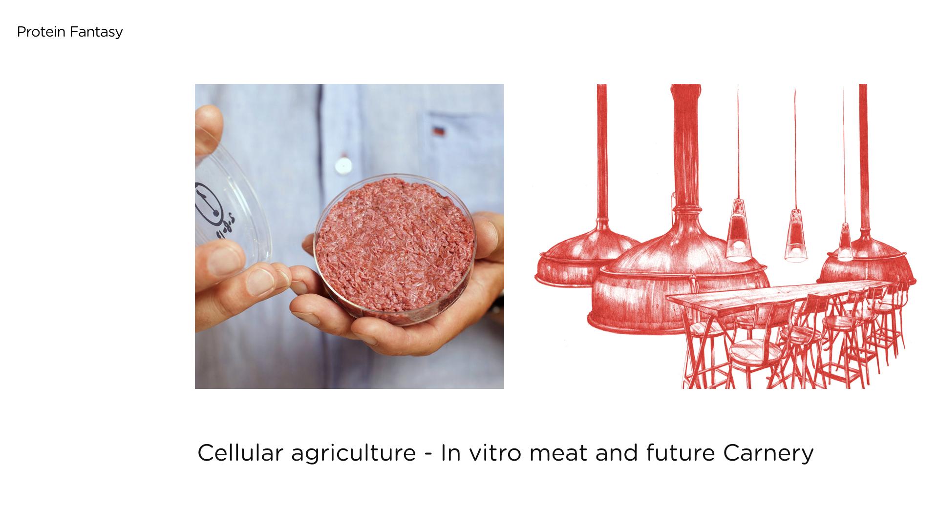 food futures slide 0507 v2.022.jpeg