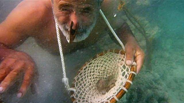 Pearl diving.jpg