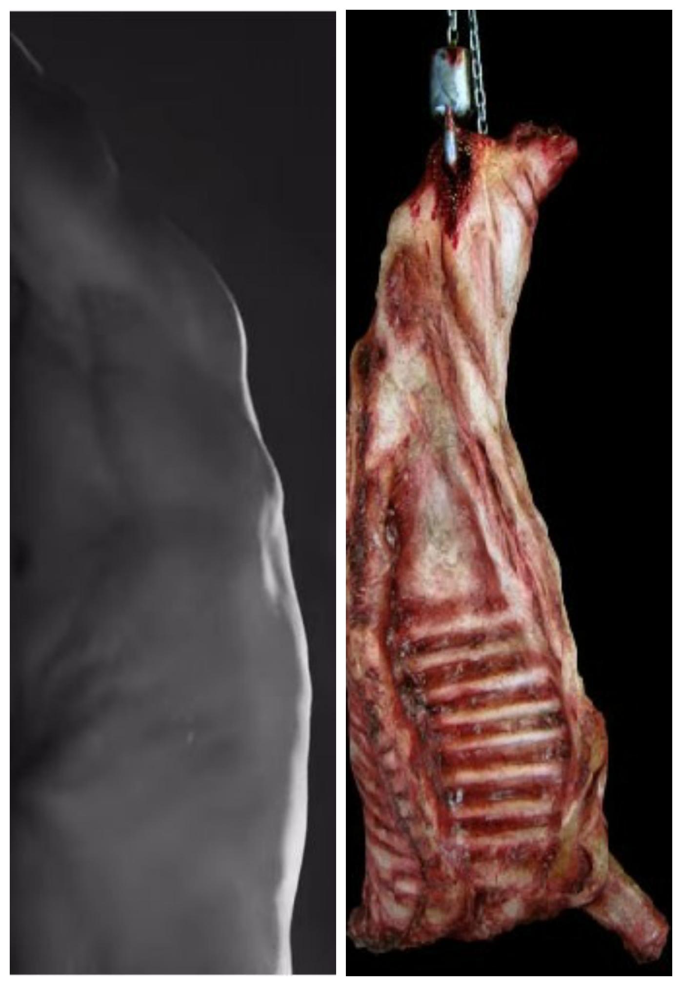 Meat...Prime rib...