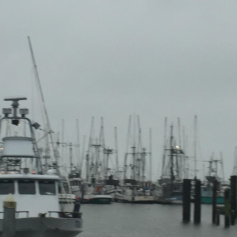 Stormy harbor.