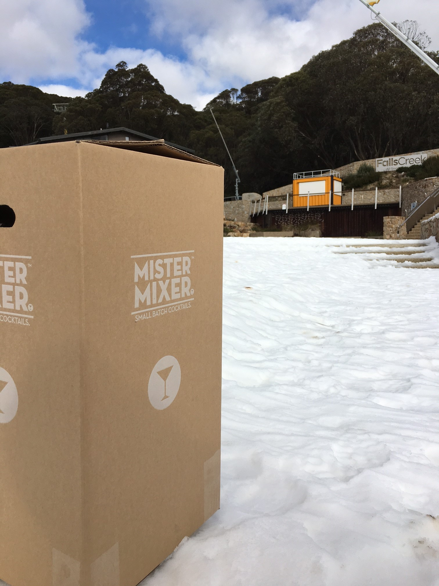 snow carton.JPG