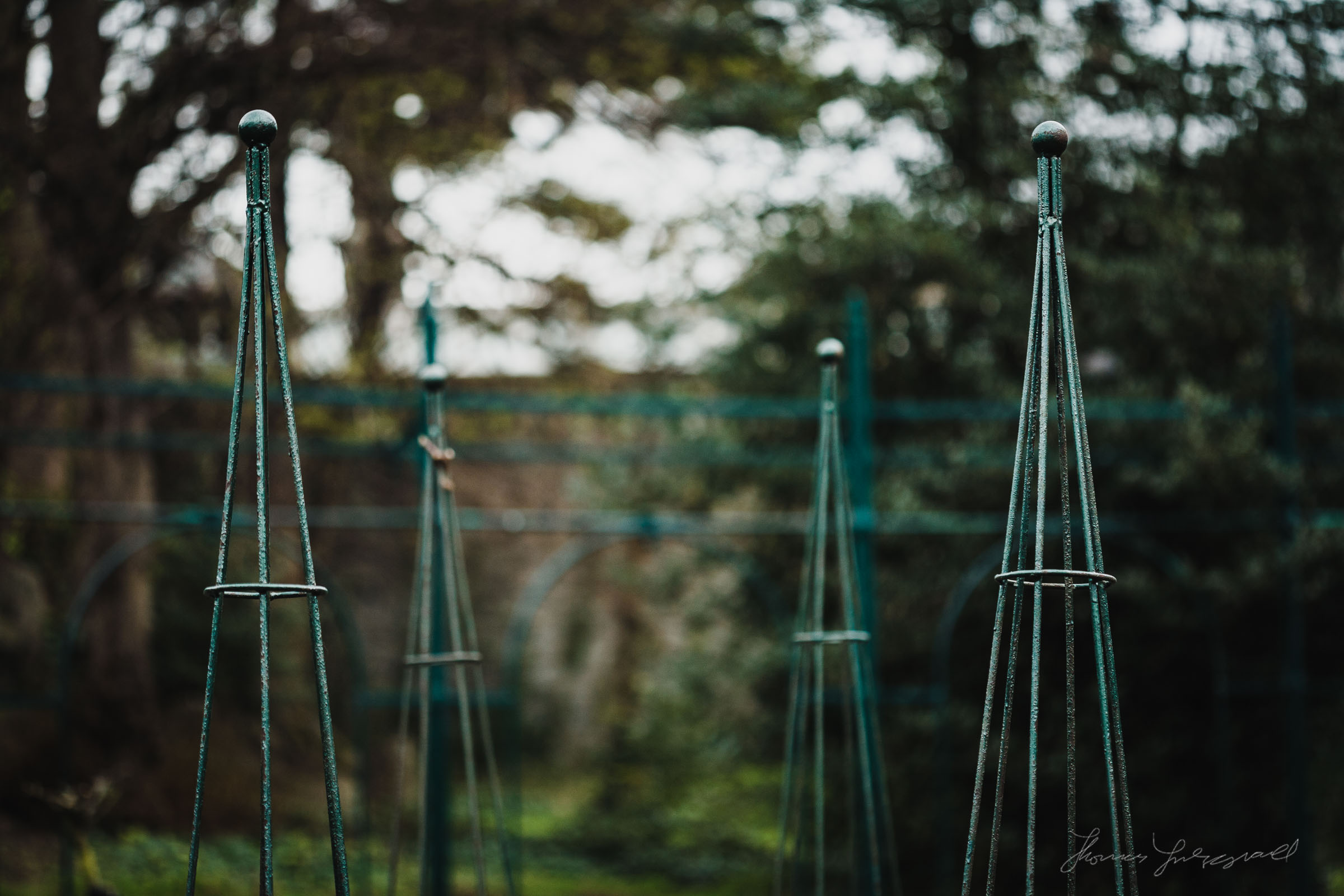 Posts for the rose bushes to grow around in Iveagh Gardens, Dublin