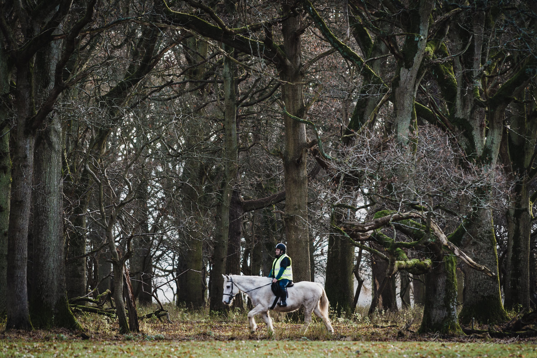 A Man riding a horse in the Phoenix Park in Dublin