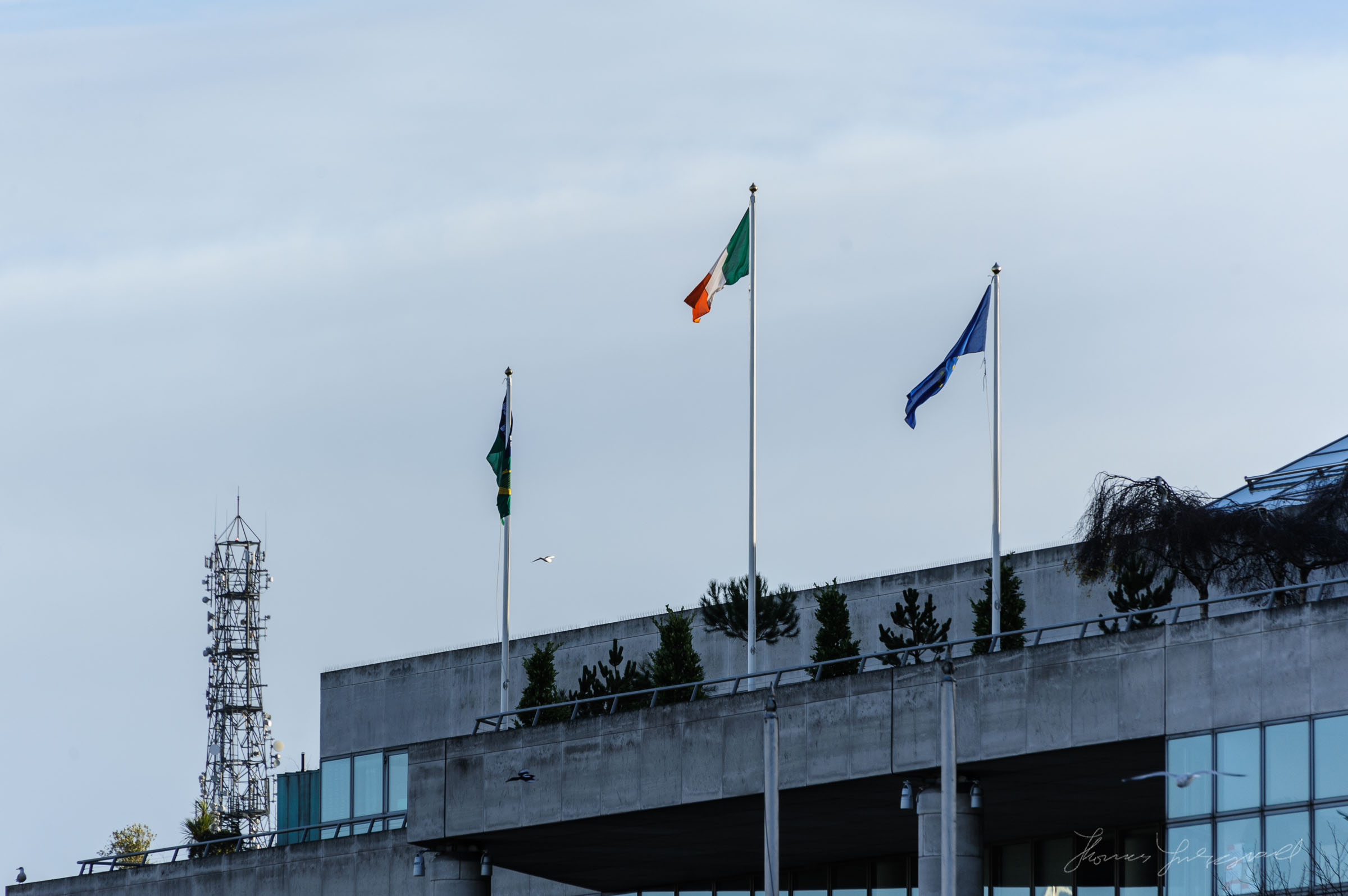 Flags on top of Dublin Council Building