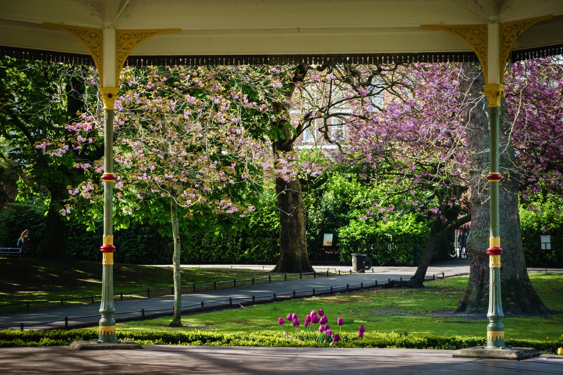 Spring flowers around the Gazebo in Stephen's Green