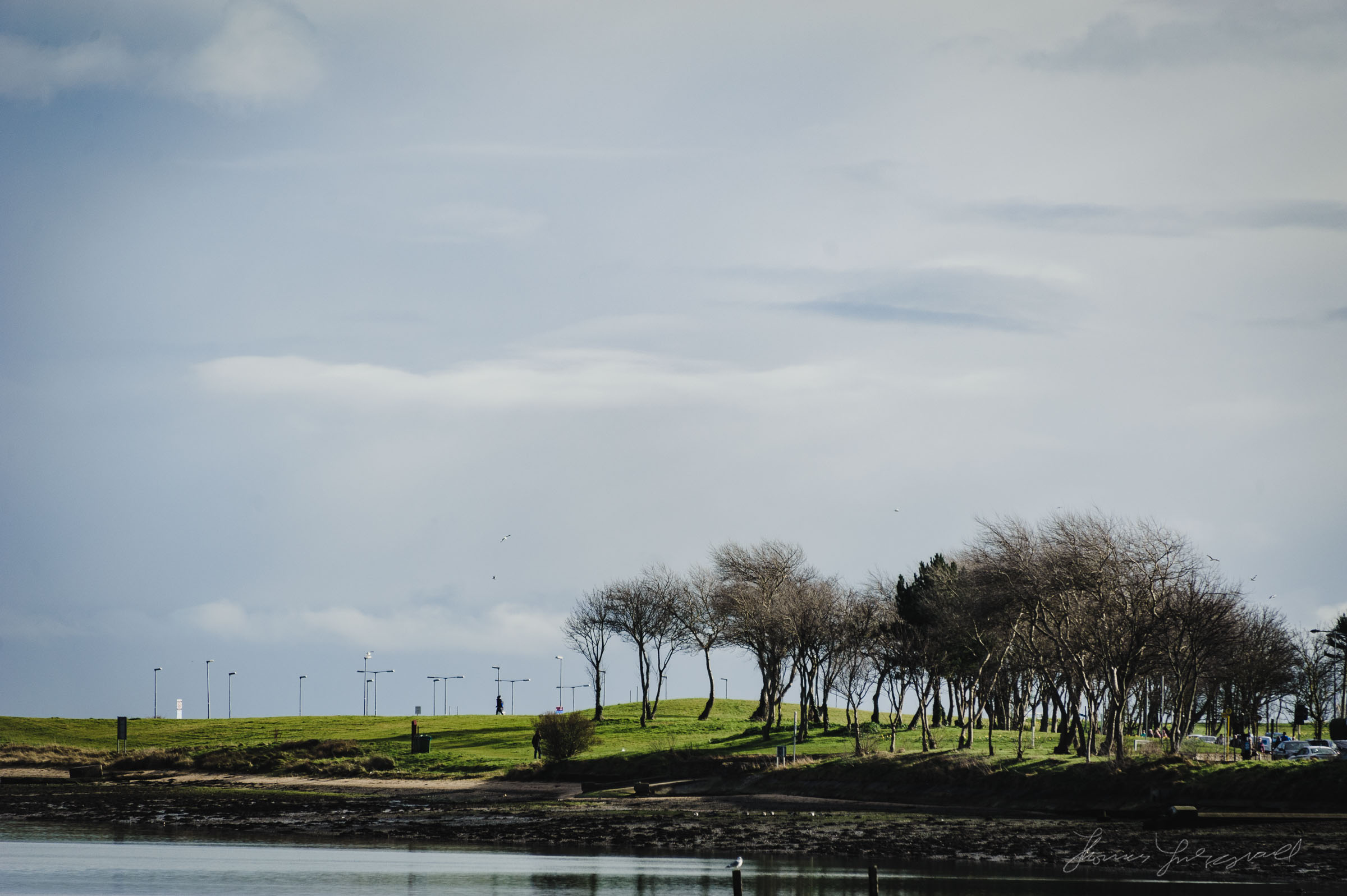 Tree Lined hills by the Water