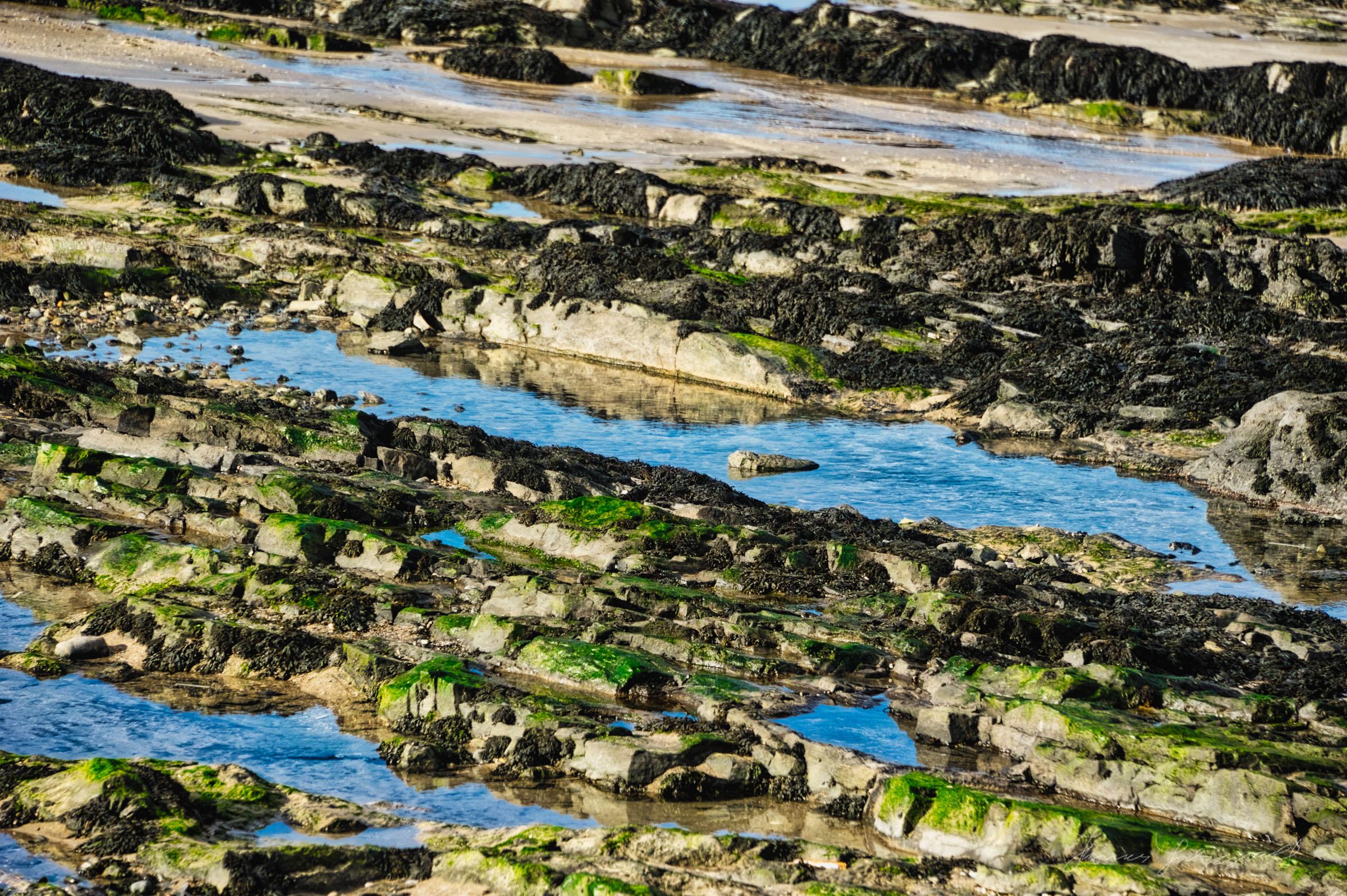 water pools in the rocks at malahide