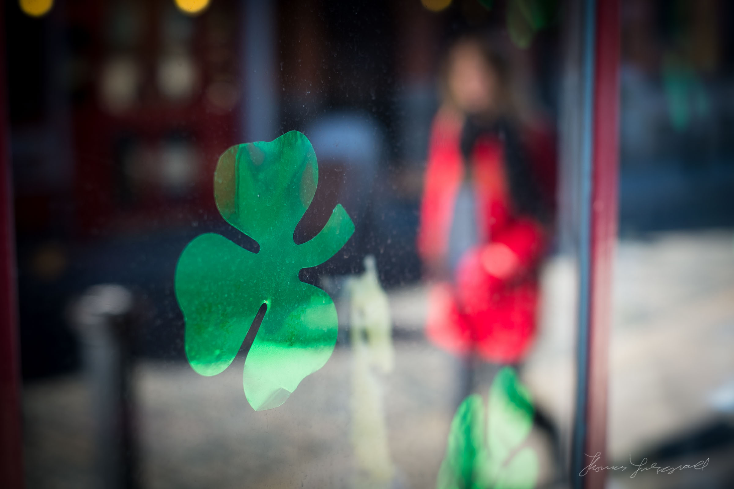 A Random Shamrock in a window!