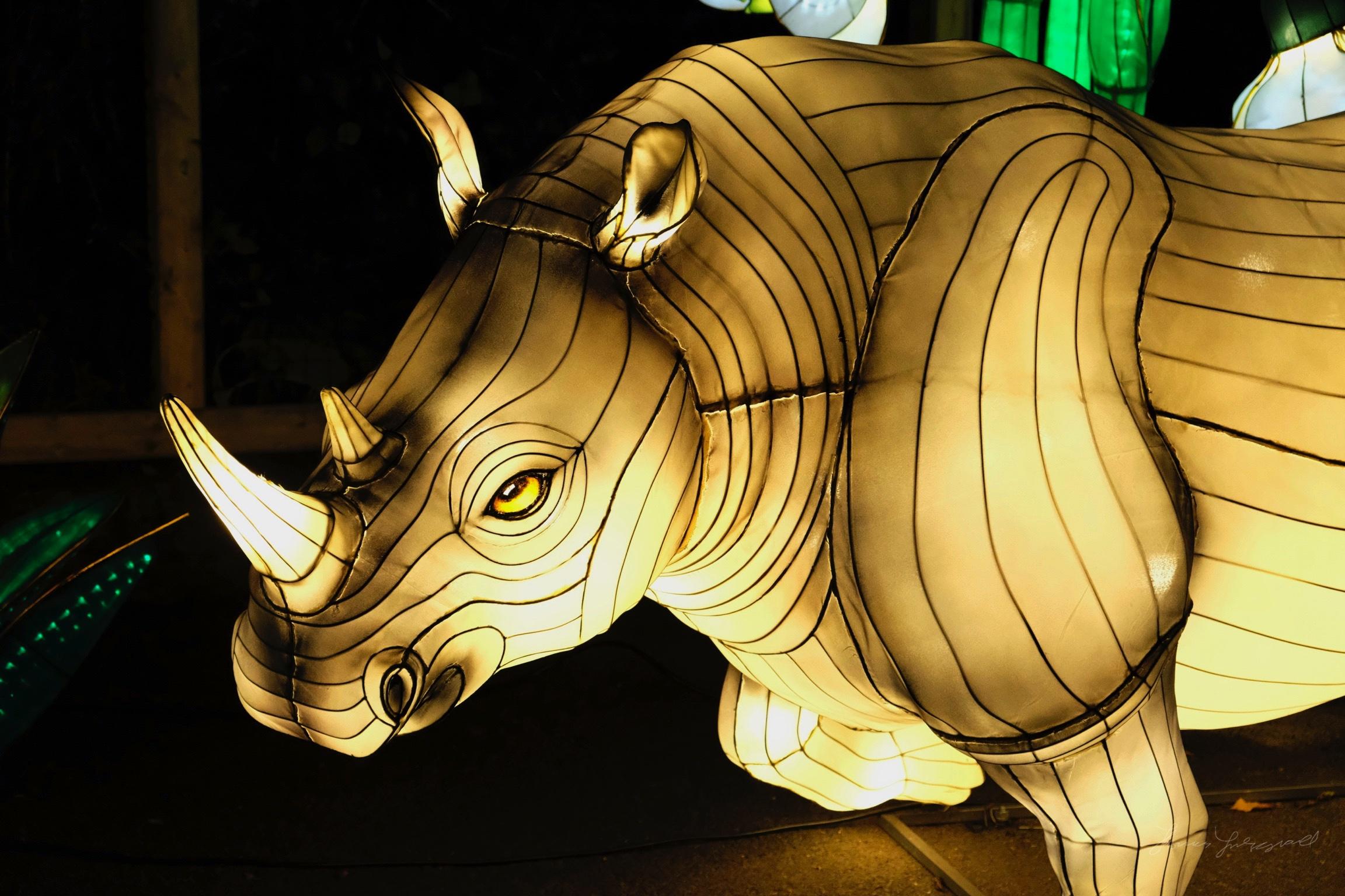 Wild-Lights-Dublin-Zoo-036.jpg