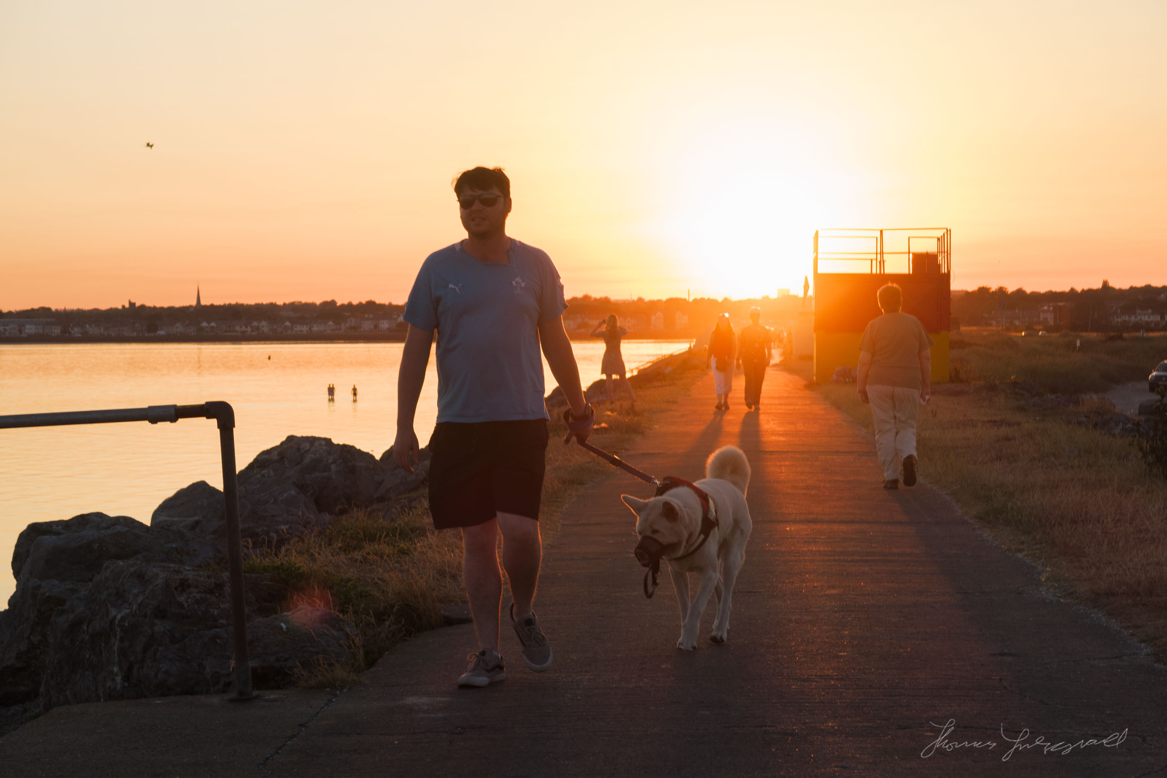 A man walking his dog at Sunset on Bull Island