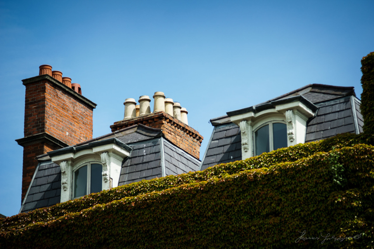 """Peek-a-boo""   I love the way these windows are peeking out over the Ivy! On top of one of the buildings on the side of Stephen's Green!   p.s. Don't forget to check out our new  Prints selection!"