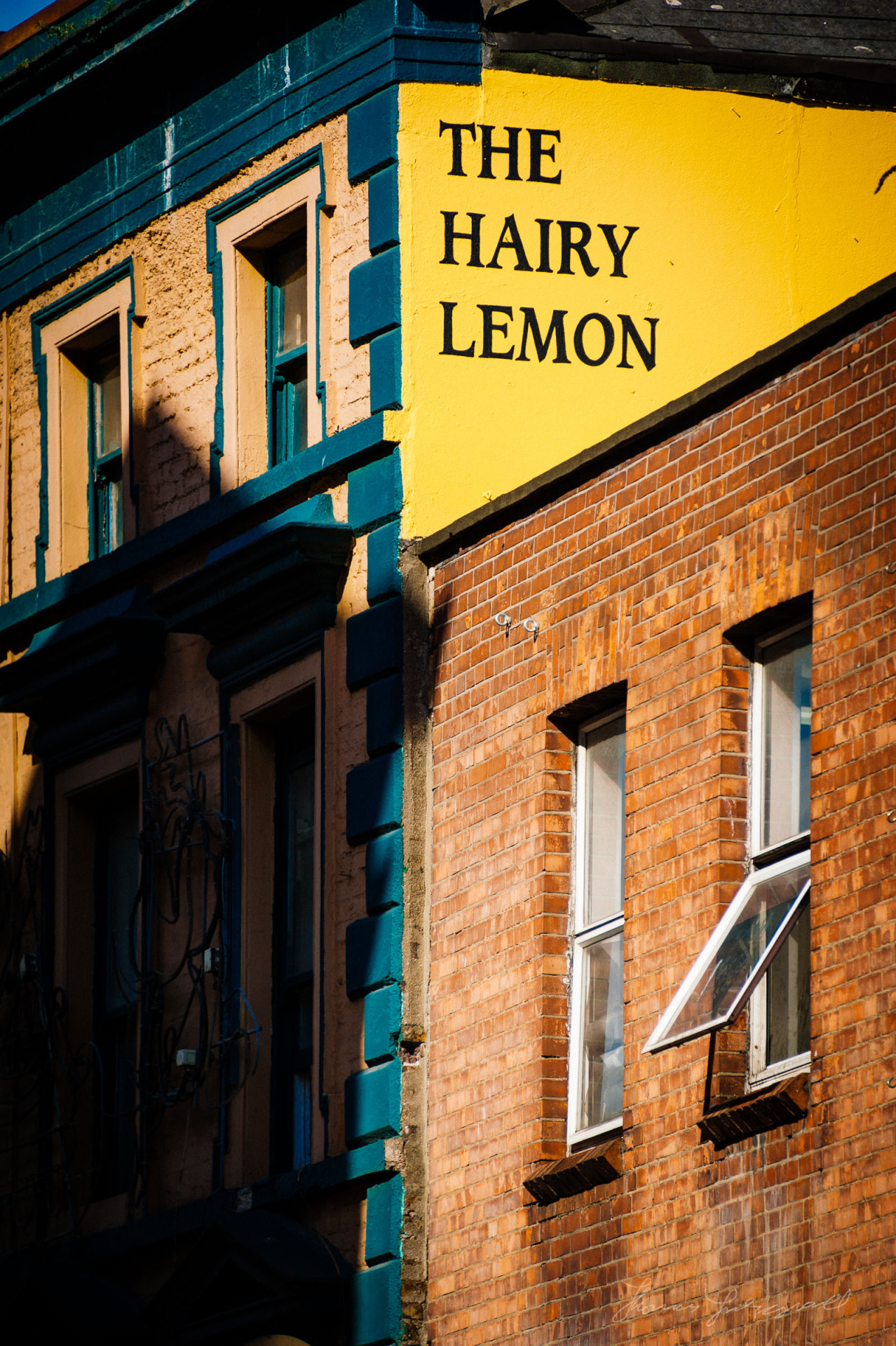 The Hairy Lemon