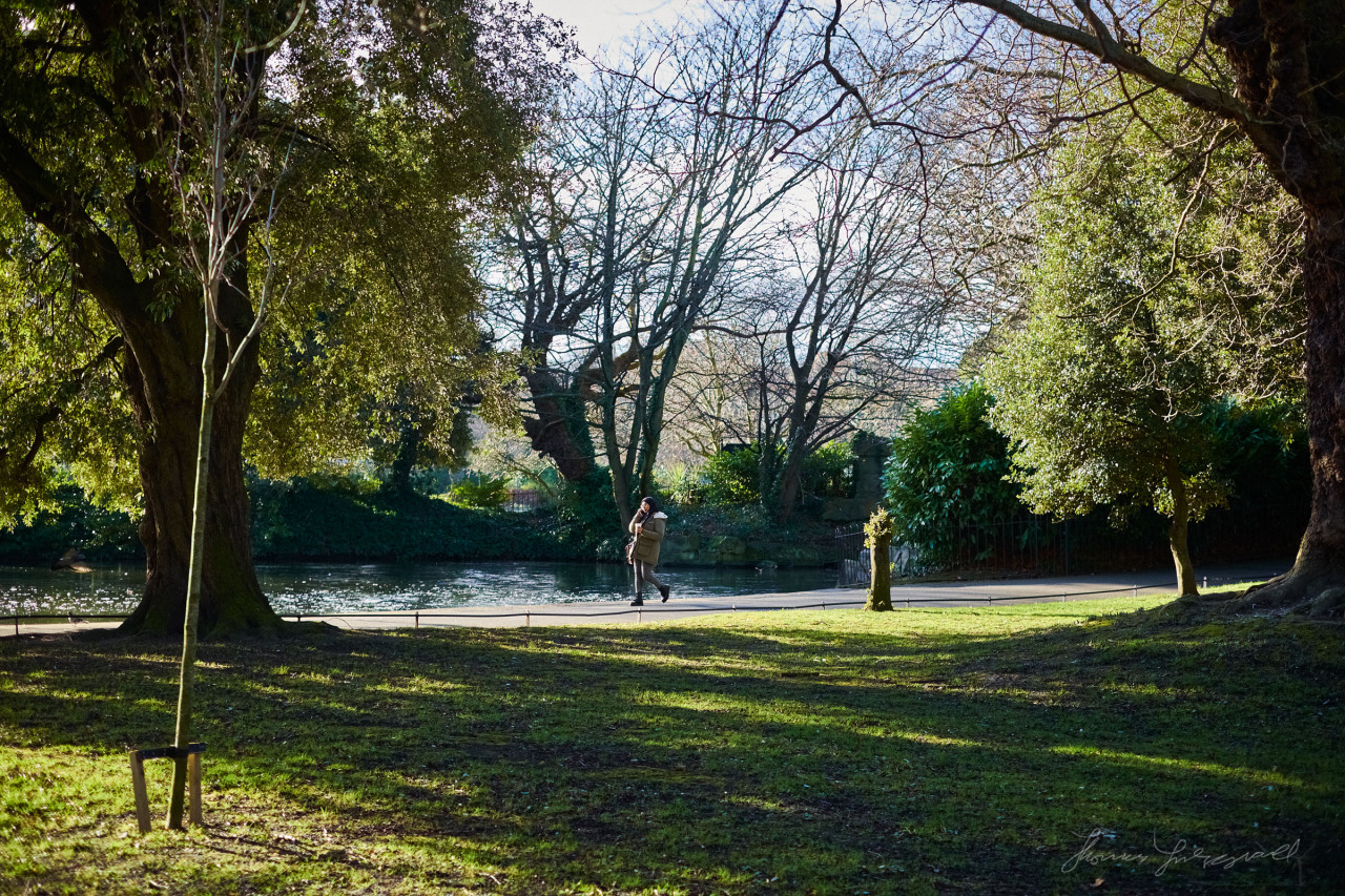 Spring in Stephen's Green