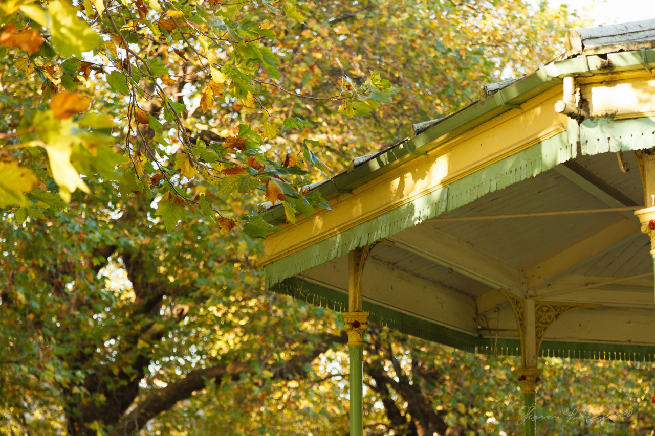 Stephen's Green bandstand and autumn leaves