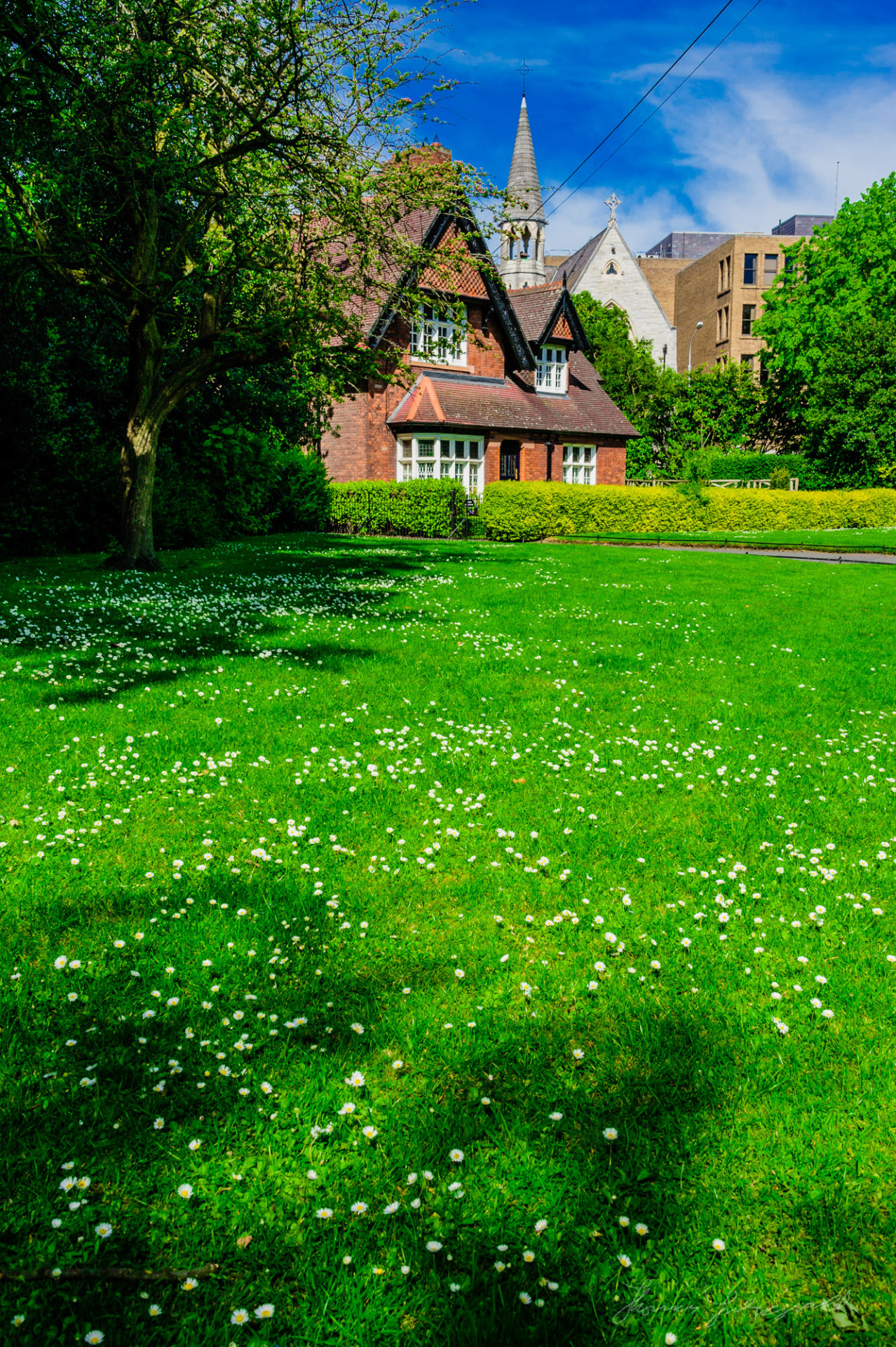 A beautiful Summer's Day in Stephen's Green with lots of daisies on the grass in front of the little red house!