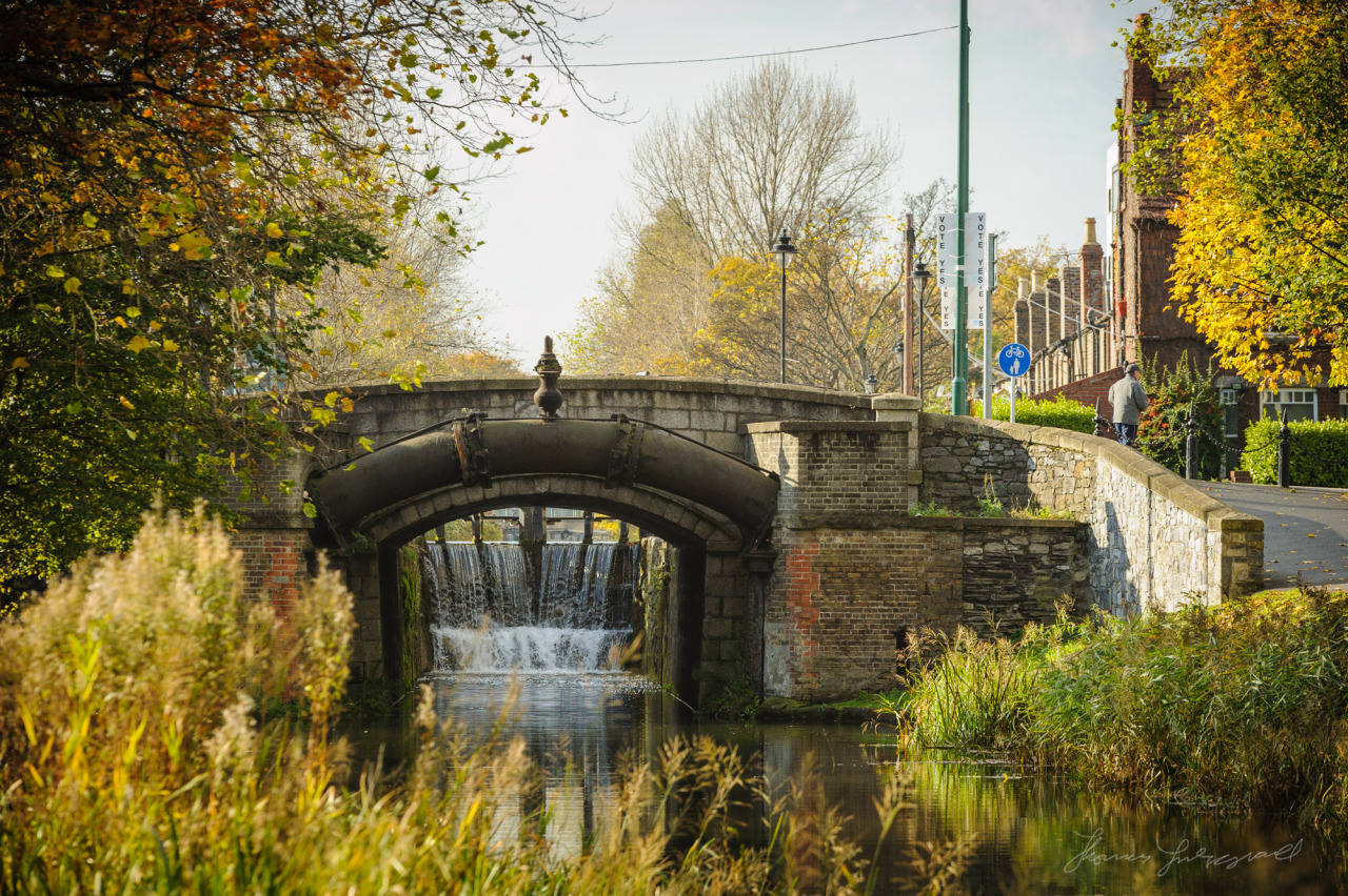 A Sunny day at Leeson Street bridge over the canal in Dublin