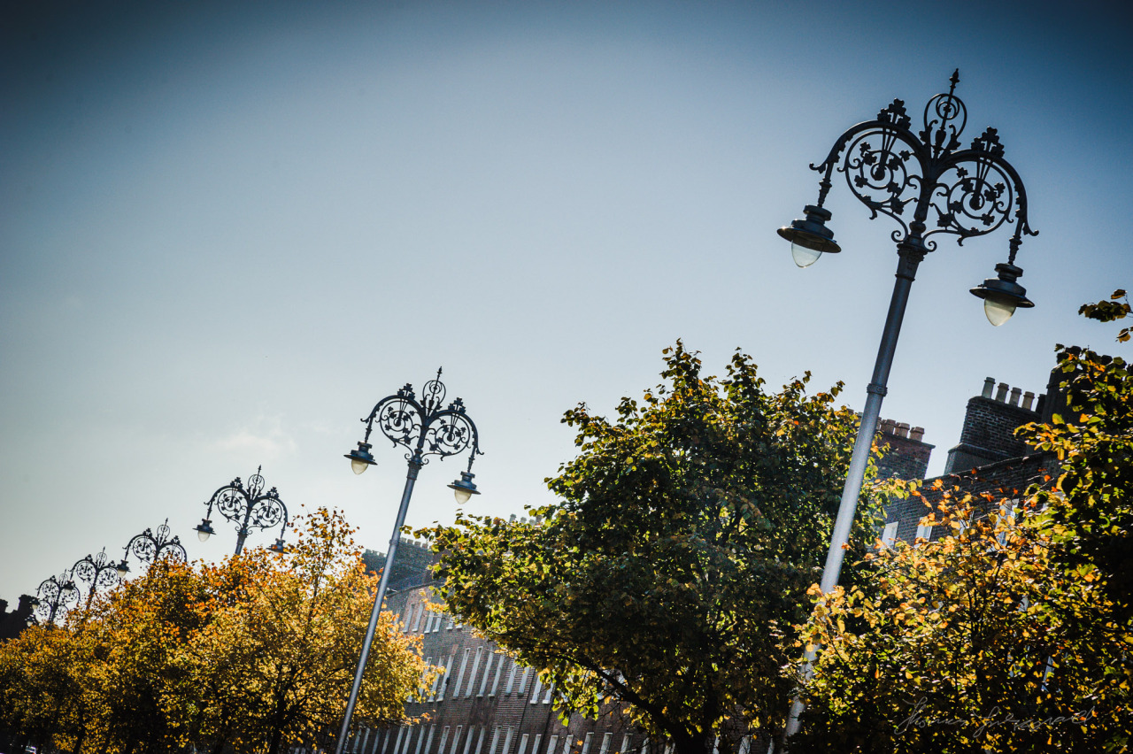 Streetlights on Baggot Street