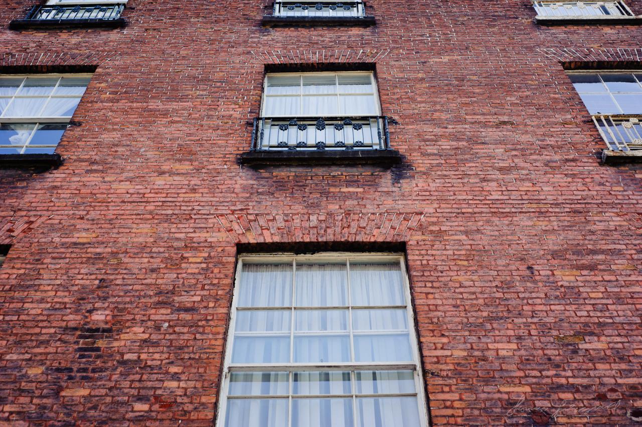 Georgian Windows on Harcourt Street