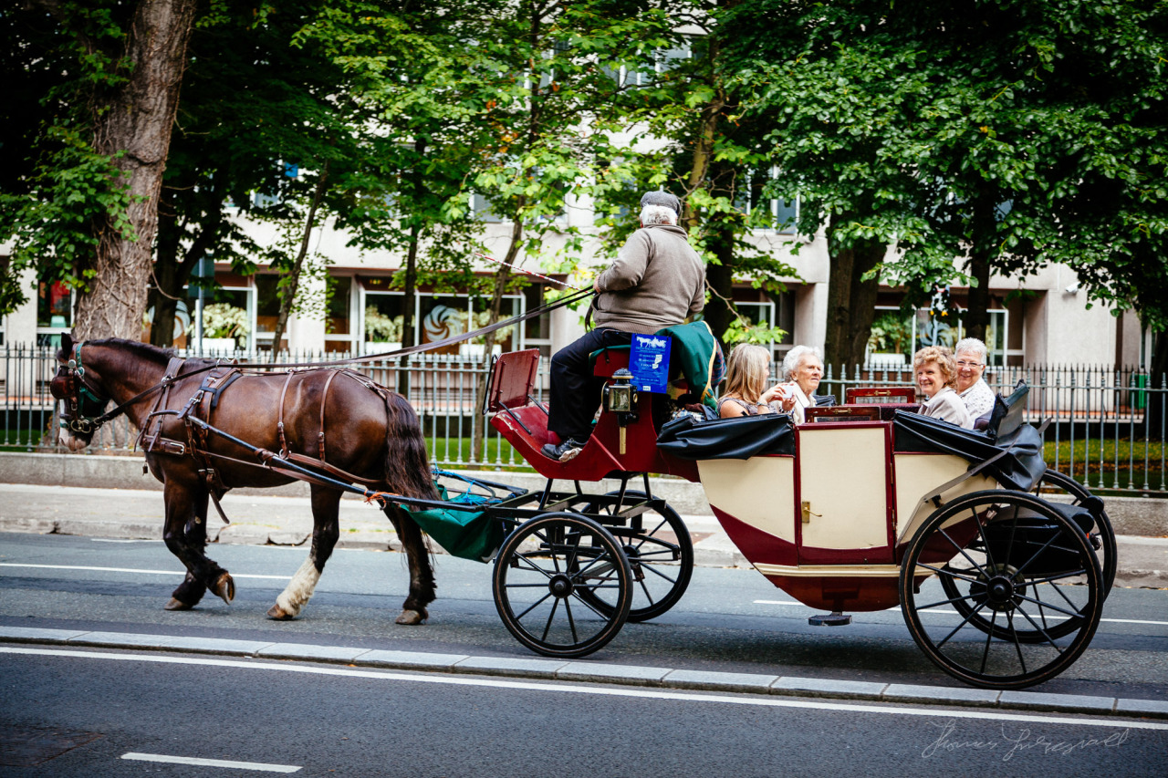 Tourists on a horse and cart by the canal in Dublin