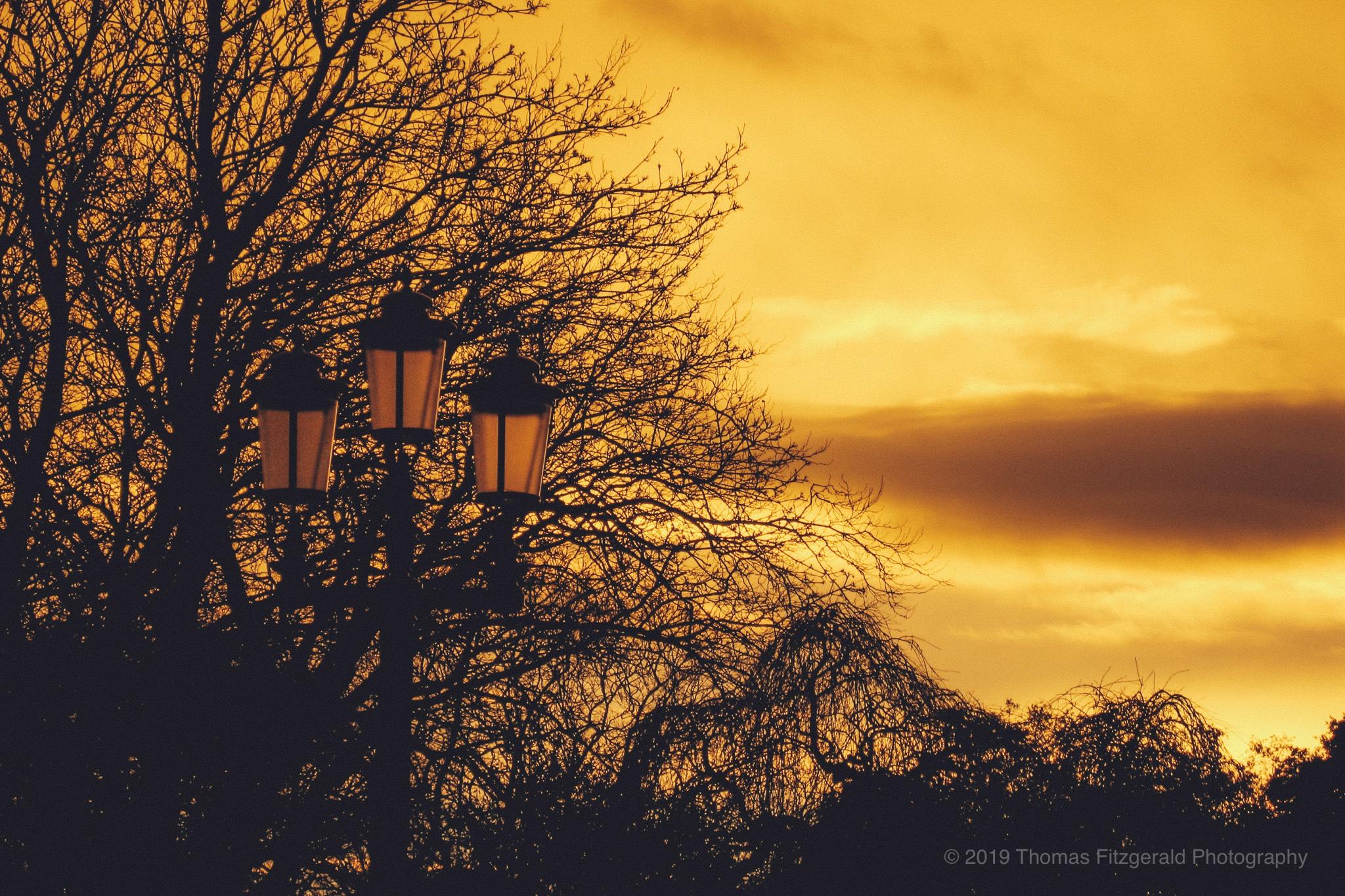 Sunset over Dublin at Stephen's Green