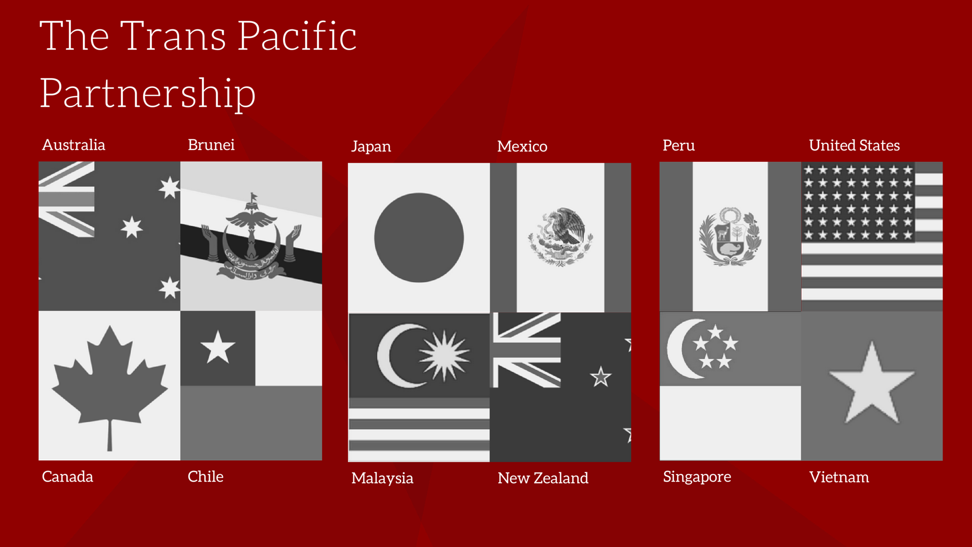 what countries are in the trans pacific partnership?