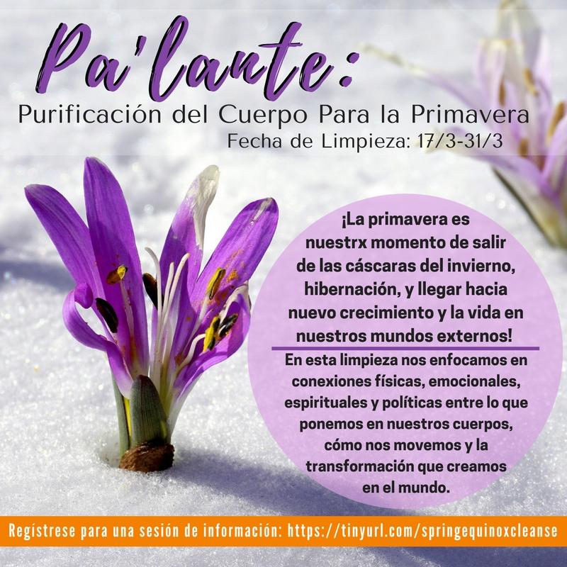 Spring Cleanse spanish.jpg