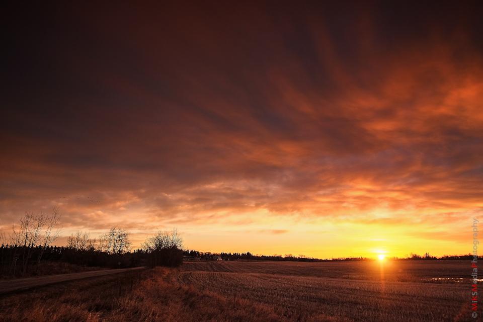 sunrise-xp1-4