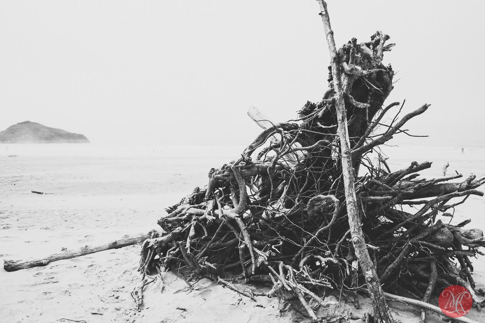beach,bc,ocean,landscape photography 01