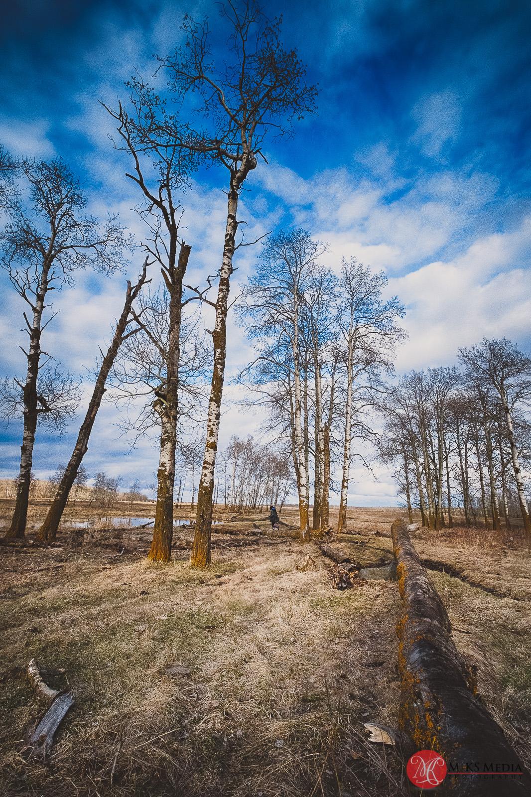 fuji,landscape,10-24,wide,alberta,outdoors,