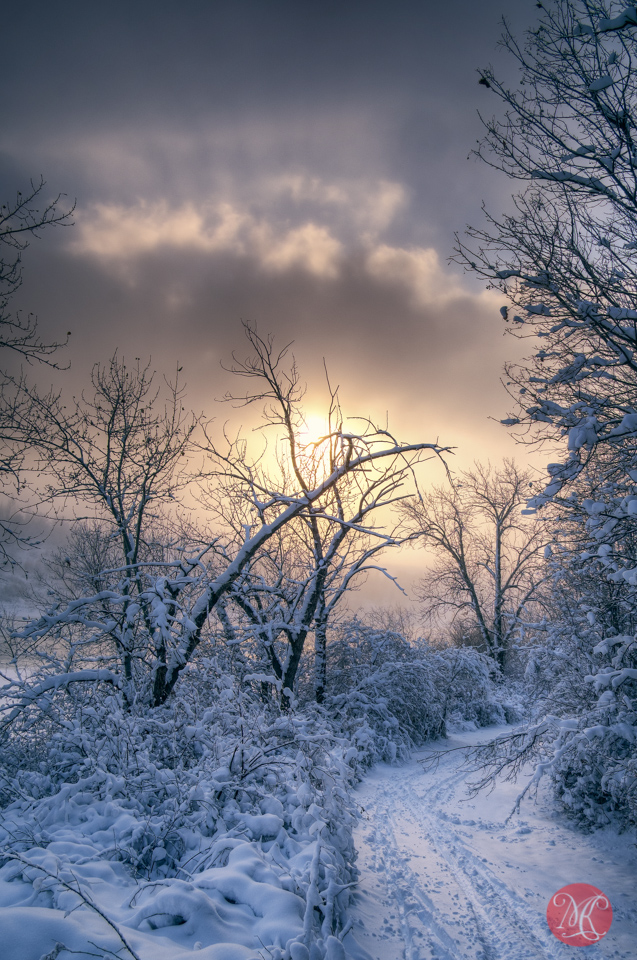 3-edmonton-winter-snow-landscape.jpg