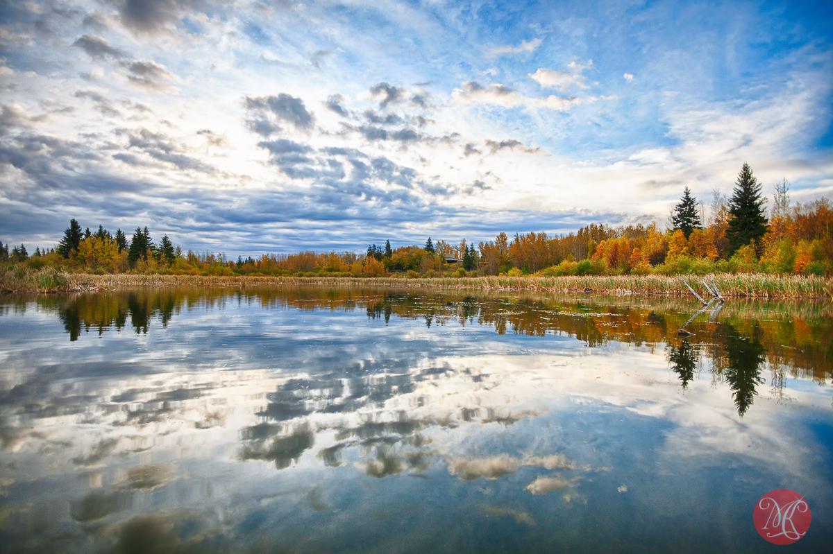 One October morning at Elk Island.. 3