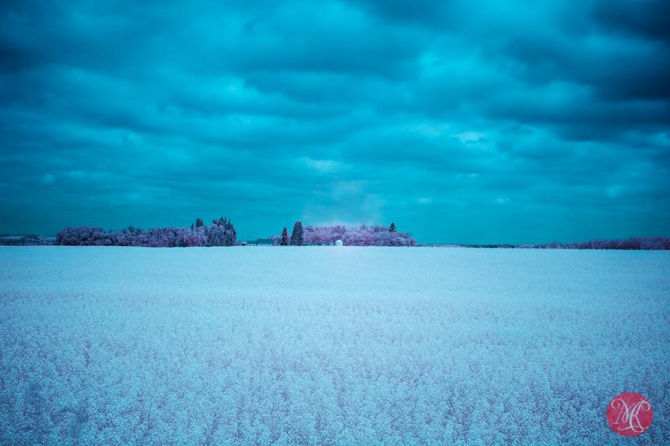 4-infrared-cloudy-landscape-alberta-photographer.jpg