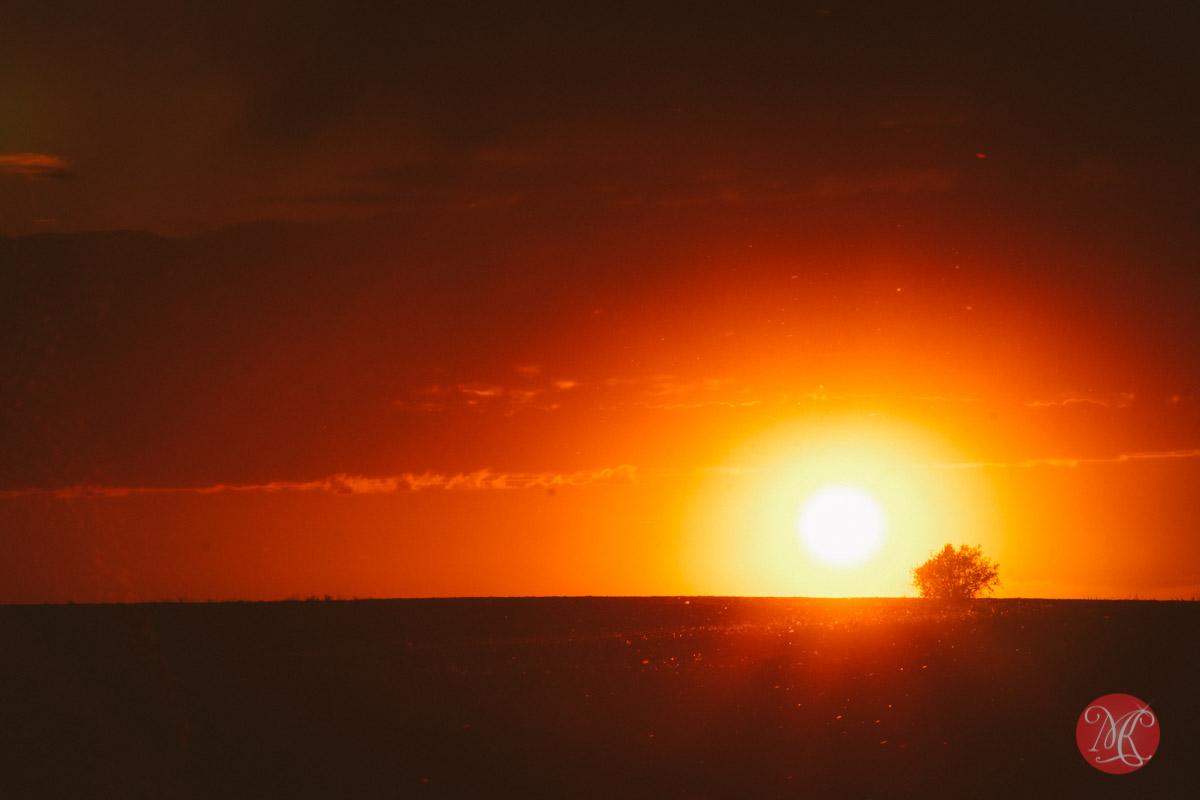 7-alberta-landscape-photography-sunset.jpg
