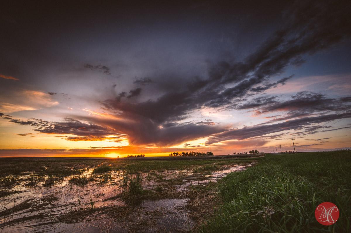 9-alberta-road-field-landscape-photography.jpg
