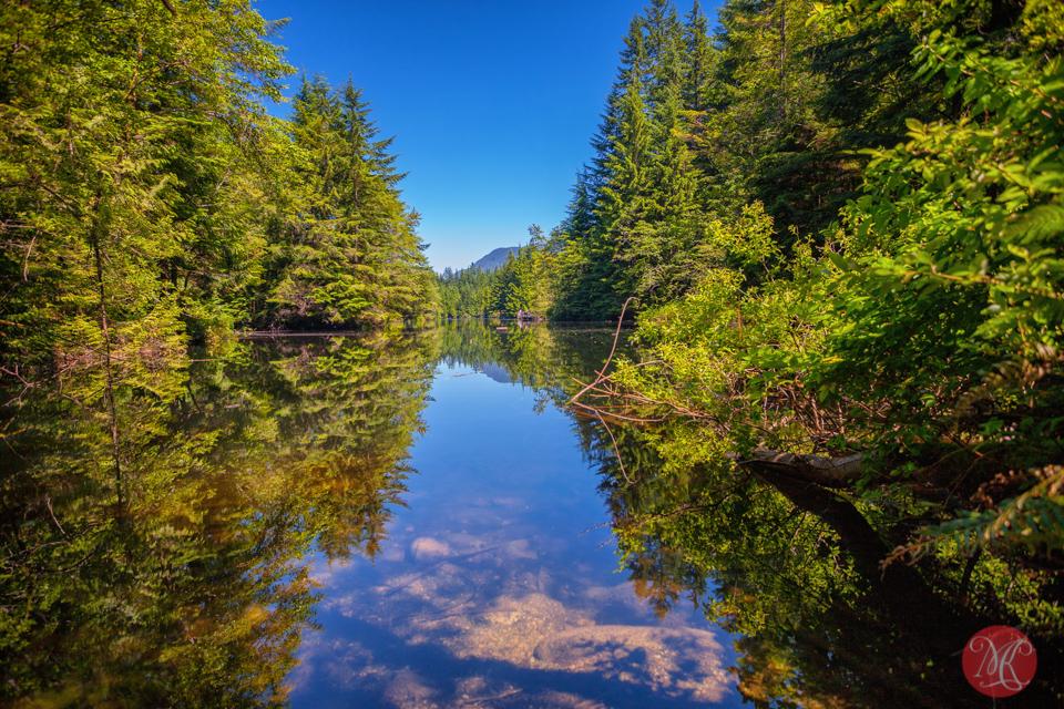 Rice Lake - Lynn Valley