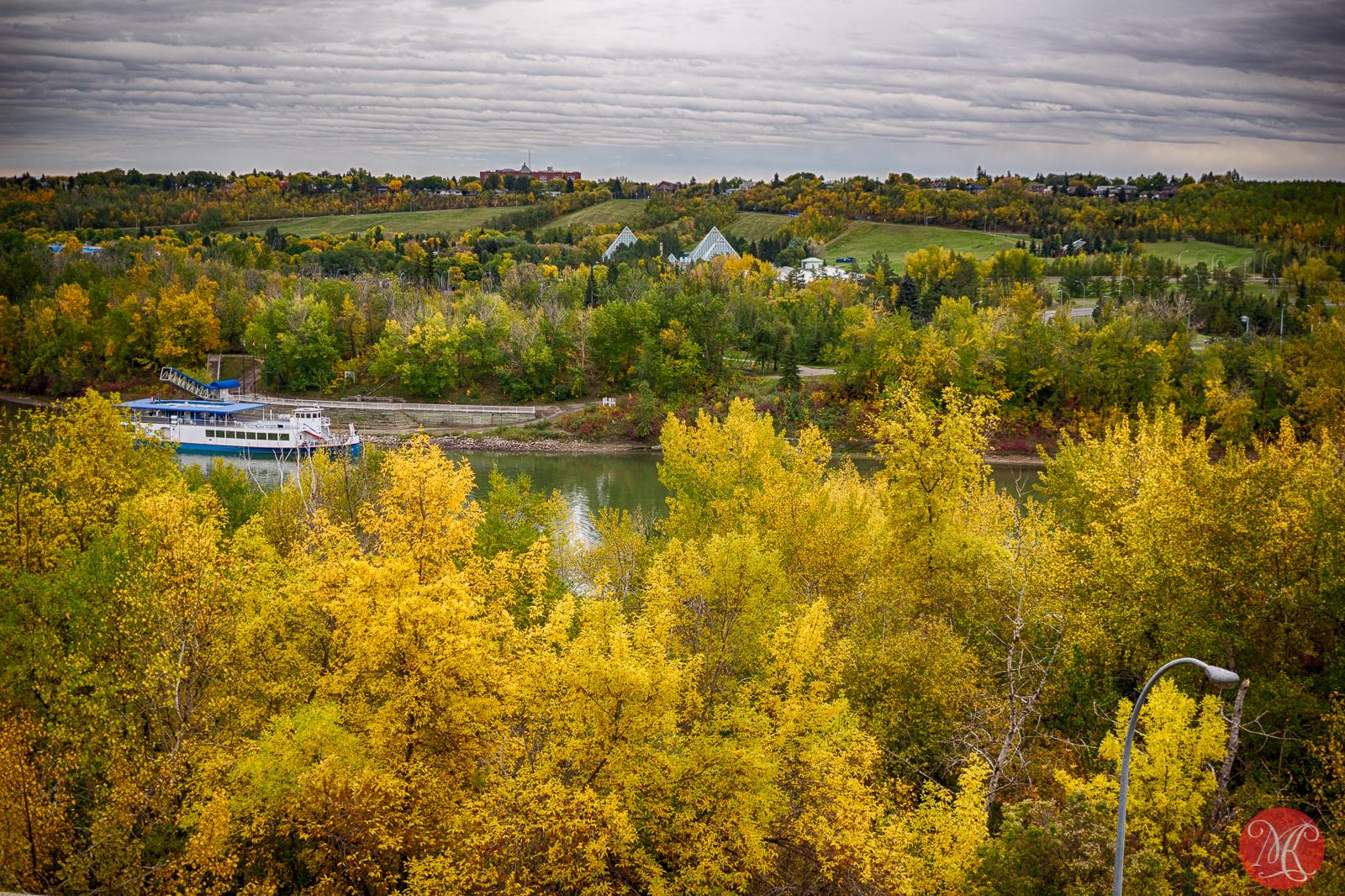 Fall in Edmonton 6