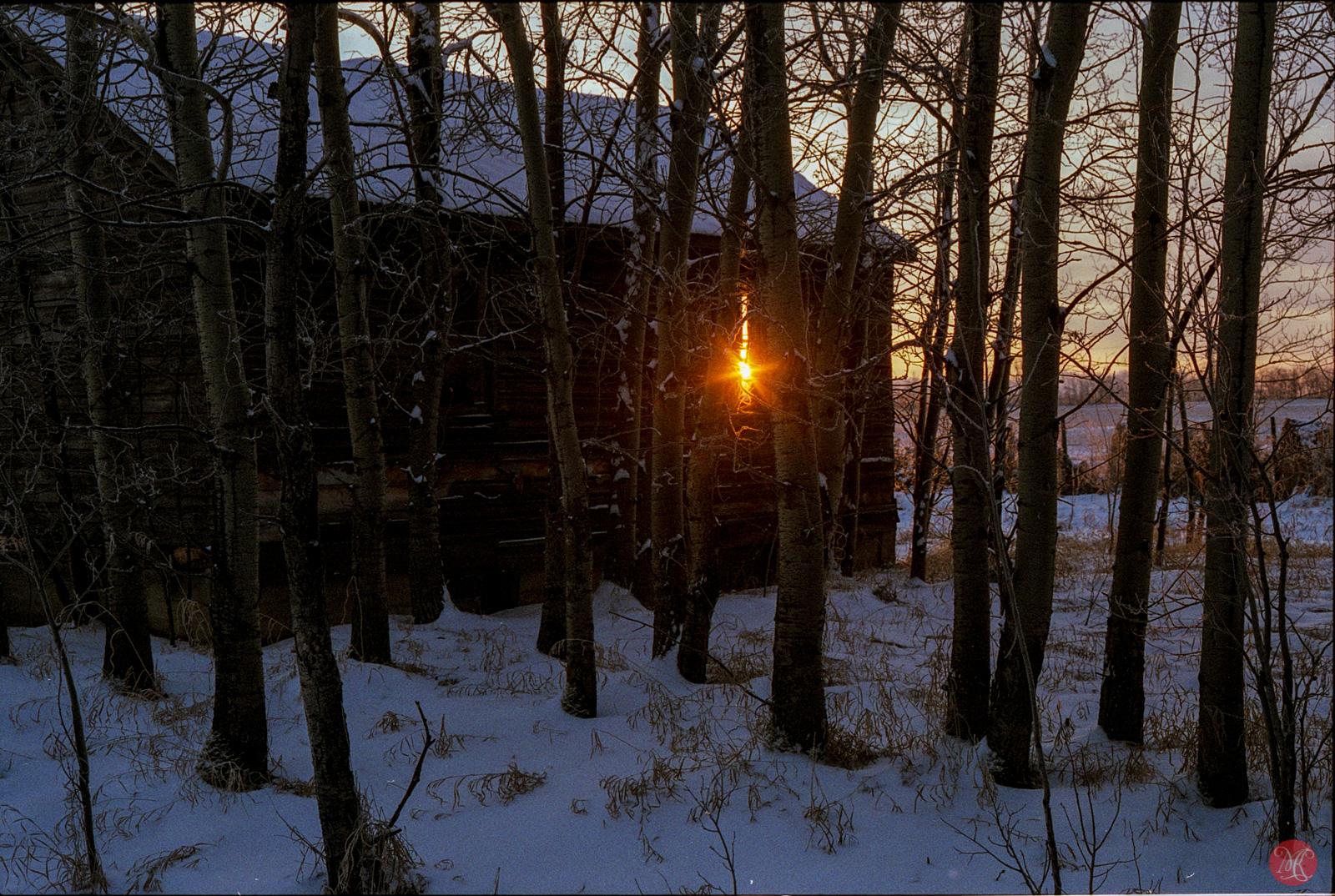 Sun peaking through a window in a abandoned house on Alberta prairies.